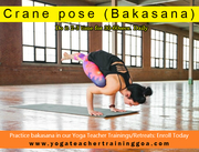 dive deeper into the practice of Ashtanga!! Join Yoga Retreat in Goa